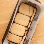 First layer of biscuits